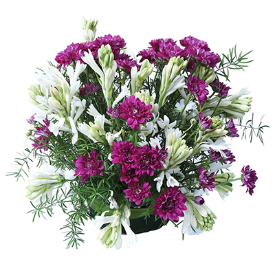 Delivery of Love with Purple Roses in Pakistan - FromYouFlowers.pk
