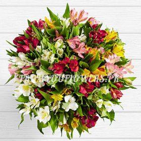 Burst Lilies b - FromYouFlowers.pk