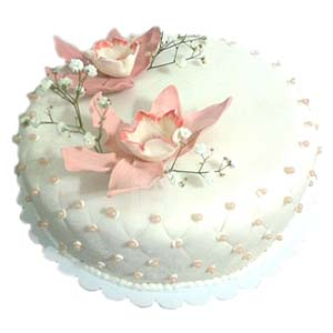 Delivery of White & Pink Pearl Cake in Pakistan