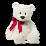 fluffy teddy bears store in Pakistan - Fromyouflowers.pk